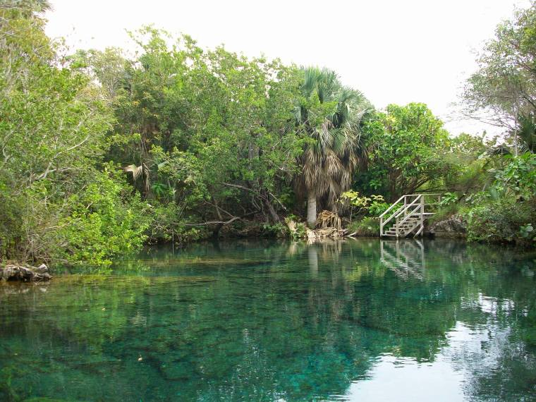 One of 11 lagoons at the Indigenous Eyes Ecological Park & Reserve, located on the grounds of the Punta Cana Hotel