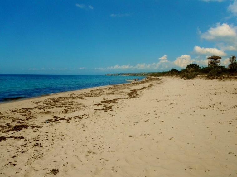 Finally there: Bahia de las Aguilas