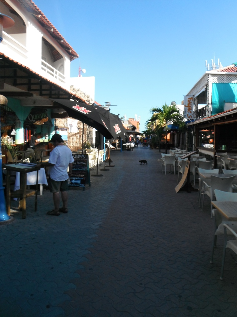 The main street on Isla Mujeres