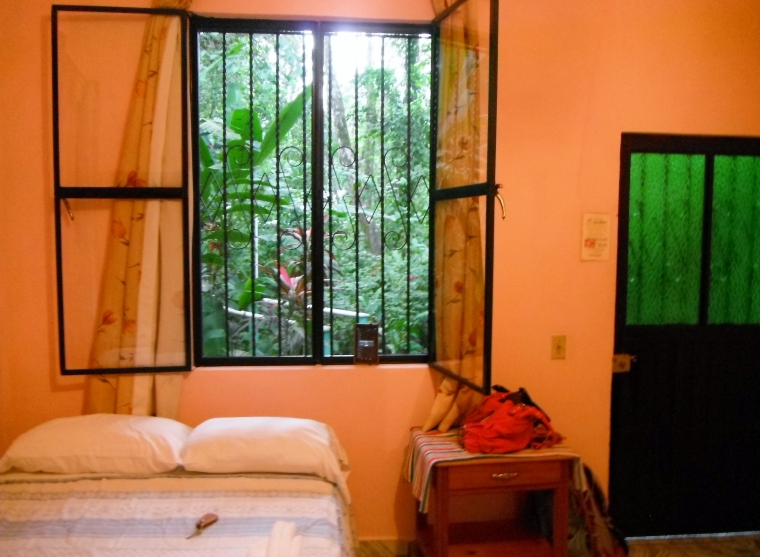 Our super-clean, very nice room opening out directly to the jungle